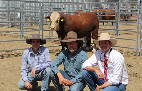 Bull Sale Results
